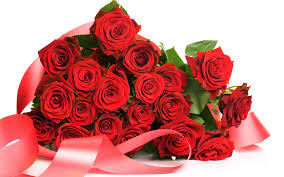 Rose Flower Images Rose Flower Wallpapers Gzsihai Com