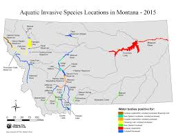Camping World Locations Map by Montana Fish Wildlife U0026 Parks Ais Species And Identification