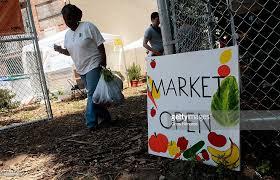 Urban Garden Supply - urban garden supplies local brooklyn residents with fresh food