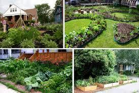 front yard vegetable garden pictures best idea garden