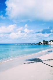 36 best 8 hours in barbados images on pinterest bridgetown