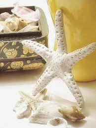 finger starfish made from clay completely coastal