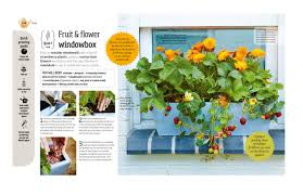 fruit and flowers indoor edible garden creative ways to grow herbs fruits and