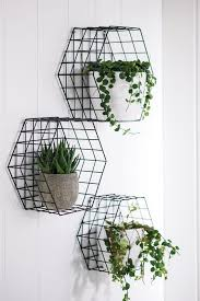 best 25 plant shelves ideas on pinterest bathroom ladder shelf