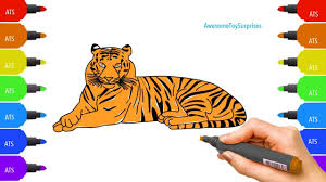 how to draw u0026 color a tiger coloring activity for kids