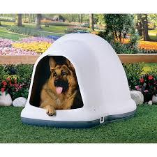 Igloo Dog House Small Shop Dogloo Ii X Large Doghouse At Lowes Com