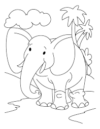 preschool jungle coloring pages elephant in the jungle coloring page download free elephant in