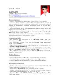 Resume Templates For Experienced It Professionals Endearing It Professional Resume Format For Experienced On Resume