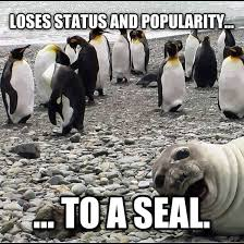 Awkward Seal Meme - awkward penguin awesome seal meme guy