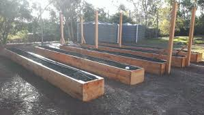 Backyard Orchards - Backyard orchard design