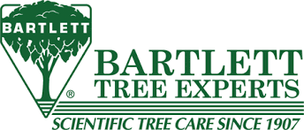 bartlett tree experts tree service and shrub care in southton ny