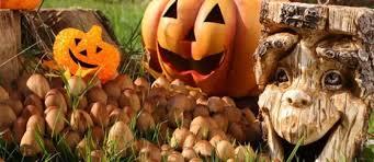 60 best diy halloween decorations for 2017 show me halloween
