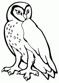 printable owl template for kids coloring home