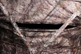 cabela u0027s the zonz specialist ground blind review the hunting