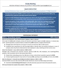 It Executive Resume Examples by 10 Executive Resume Templates U2013 Free Samples Examples U0026 Formats