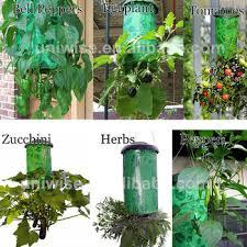 upside down tomato pepper bell pepper eggplant zucchini herbs