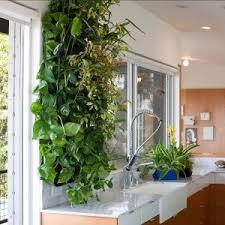 10 best vertical wall gardens images on pinterest houseplants