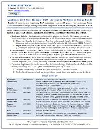 Executive Recruiter Resume Sample by 28 Coo Resumes The Top 4 Executive Resume Examples Written
