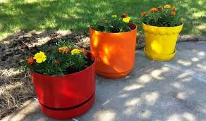 how to choose the best plastic plant pots for gardening