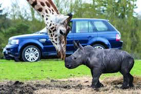 competition win tickets to west midlands safari park stratford