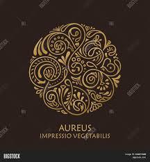 round calligraphic emblem vector floral symbol for cafe