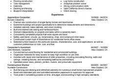 Carpenter Resume Example by Download Example Of Customer Service Resume Haadyaooverbayresort Com