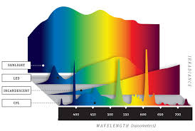 light bulb color spectrum lighting supply blog on everything lighting lighting supply