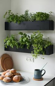 kitchen herb garden ideas kitchen herb garden diy fab fit ideas skipset info