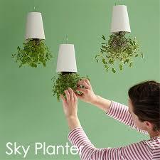 decorative small hanging plant pot plastic upside down flower pots