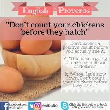 Never Count Your Chicken Before They Hatch 44 Best Proverbs Sayings Images On Proverbs