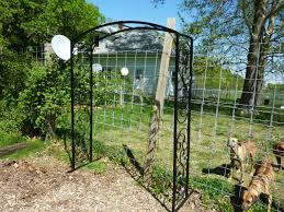 arbors trellises and obelisks are just some of what we do visit