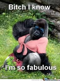 I Am Fabulous Meme - bitch i m fabulous by wahranelo meme center
