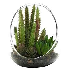 glamorous terrarium glass bowls design glass terrarium bowls