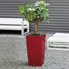 Self Watering Planters Lechuza Scarlet Red All In One Cubico Self Watering Planter