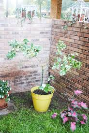 gardening house of modern vintage