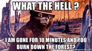 Smokey The Bear Meme - what the hell i am gone for 10 minutes and you burn down the