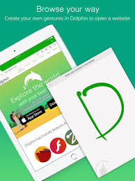 dolphin apk browser dolphin web browser for on the app store