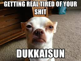 Getting Real Tired Meme - getting real tired of your shit dukkaisun grumpy dog is tired of