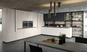 Kitchen Cabinets Modern Modern Kitchen Cabinets European Cabinets Design Studios