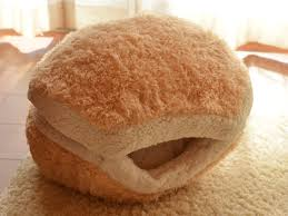 this cat burger bed will turn your cat into an adorable burger