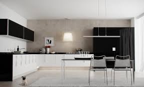 modern black and white kitchen monochrome interior design idea creates elegant and strong