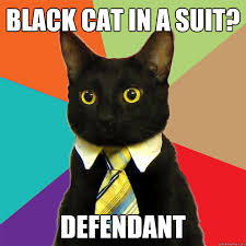 Cat Suit Meme - black cat in a suit cat meme cat planet cat planet