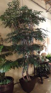 Home Decor Artificial Trees Artificial Trees And Greenery For Home And Office Spaces Home