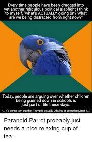 25 best memes about paranoid parrot paranoid parrot memes