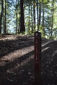 thanksgiving camping california portola redwoods sp