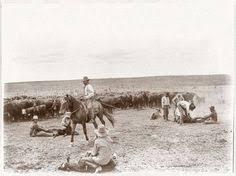 a cowboy poses on horseback on a ranch in colorado between 1882