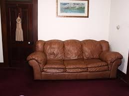 linette u0027s living room revamp softspring carpet inspired renovation