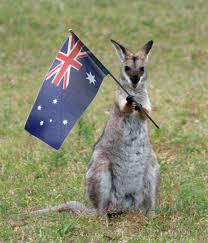 Funny Australia Day Memes - happy australia day the colourful australian language aussie