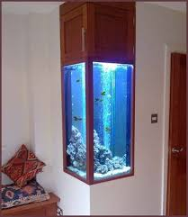 best 25 fish tank decor ideas on plant fish tank