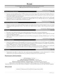 Data Analyst Resume Examples by Professional Resume Samples Resume Prime